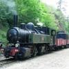 Locomotive Blanc-Misseron Mallet n° 104